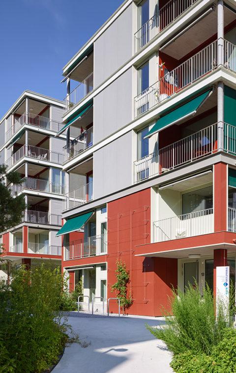 Alters- und Familienwohnsiedlung, Wettingen